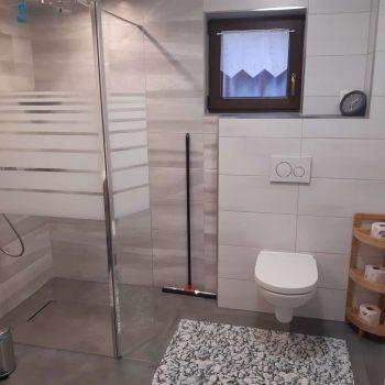 Ferienwohnung Waldblick Badezimmer Ansicht Dusche und Toilette